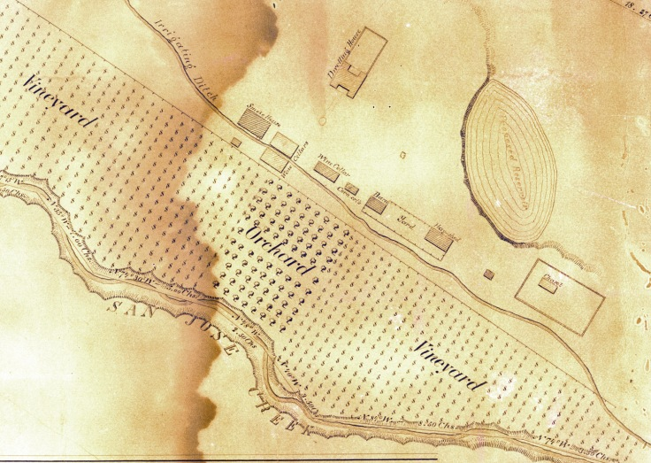 A section of an 1880 map commissioned by William Workman's grandson, Francis, shows three wine cellars and vineyards separated by an orchard.