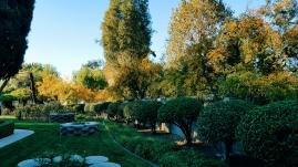 The West Lawn of La Casa Nueva, by Marcy Moreno.