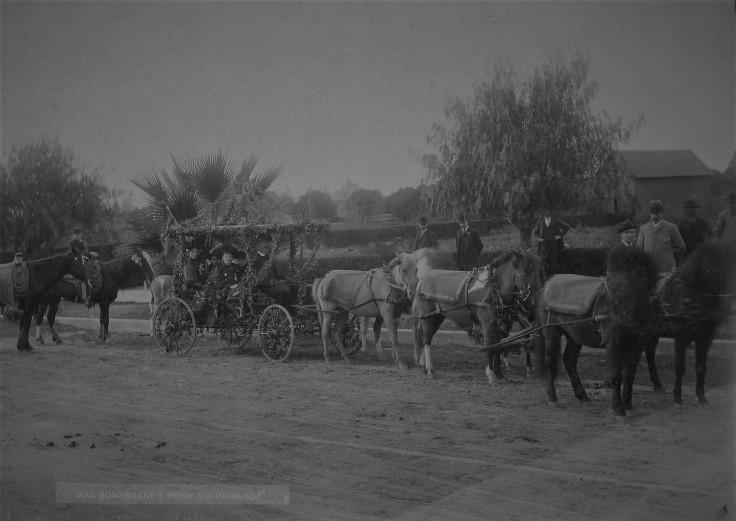 bonebrake-buggy-rose-parade-1890s