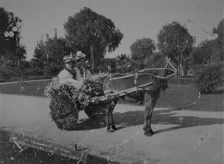 buggy-rose-parade-1890s