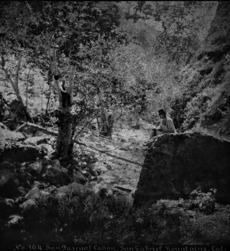 SV No 164 San Pascual Canon San Gabriel Mountains Cal 2010.438.1