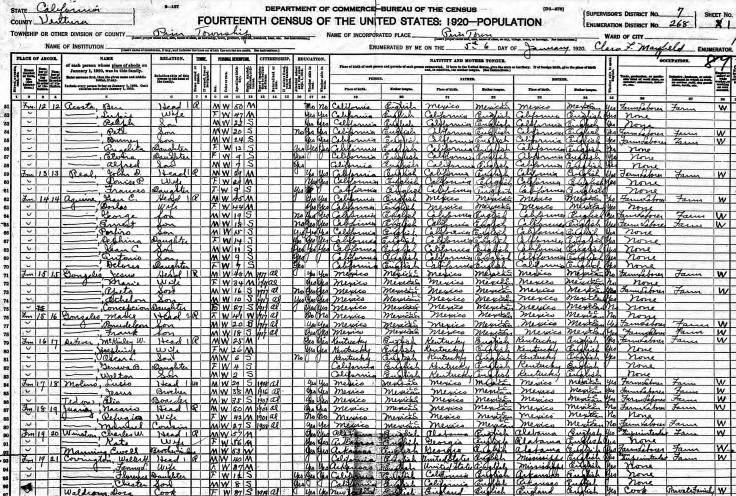 Winston 1920 census