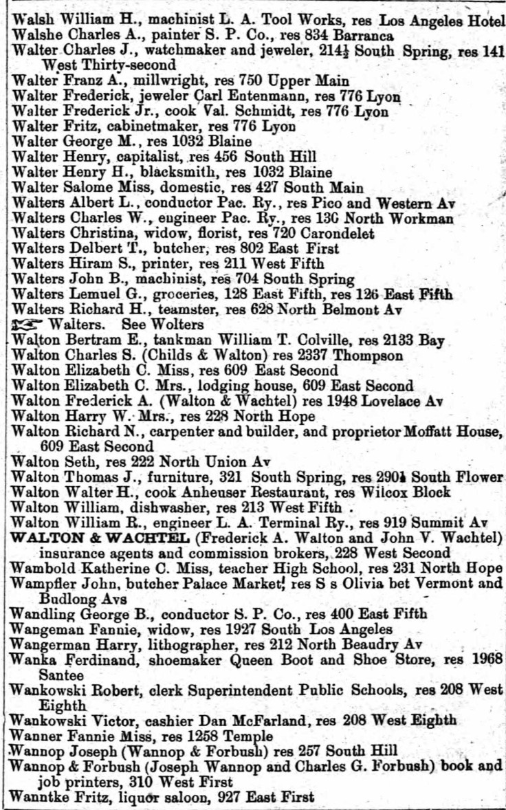 Walshe 1893 directory
