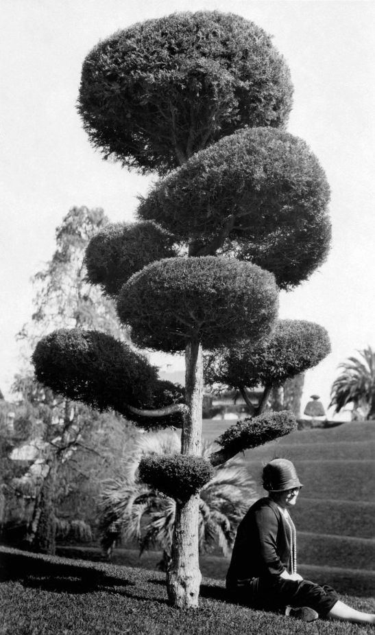 Woman Sitting Next To A Topiary Busch Gardens 2009.115.1.7