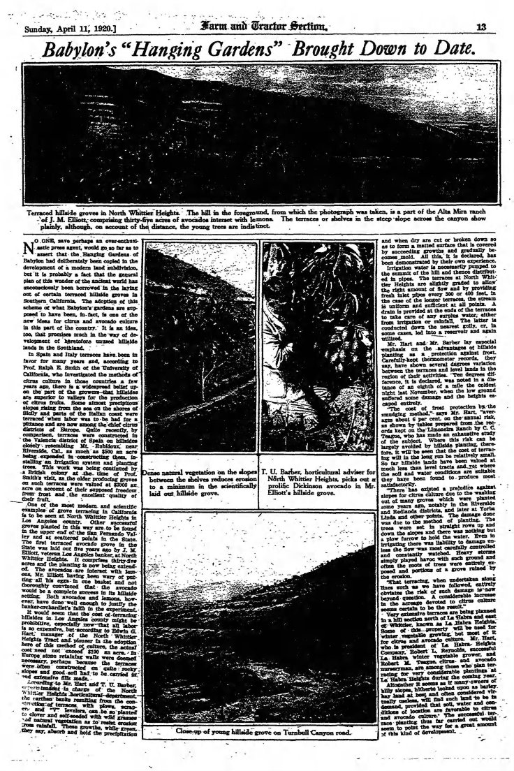 Babylon's Hanging Gardens The_Los_Angeles_Times_Sun__Apr_11__1920_
